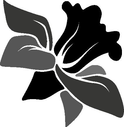 Black And White Flower clipart - Design, Drawing, Flower, transparent clip  art